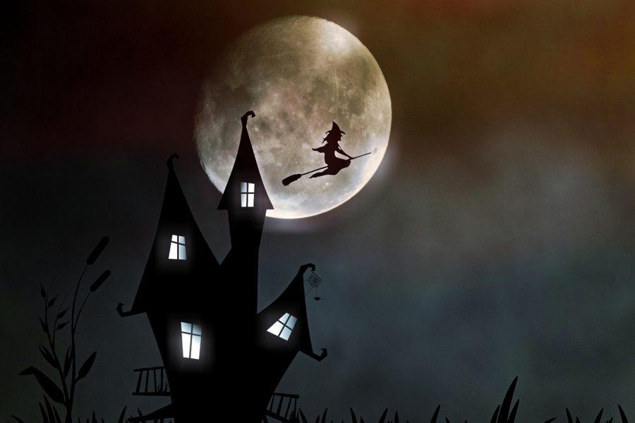 Der Kasperl und die verwirrte Hexe