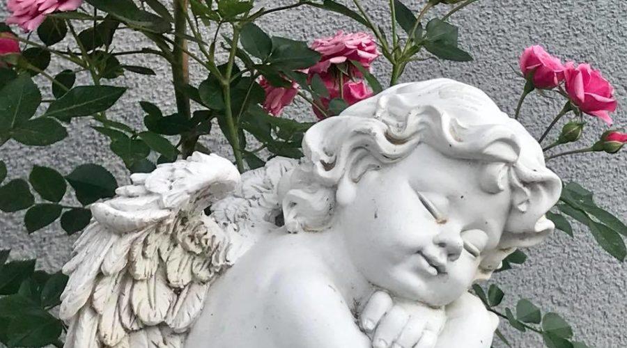 Engelflüsterer werden