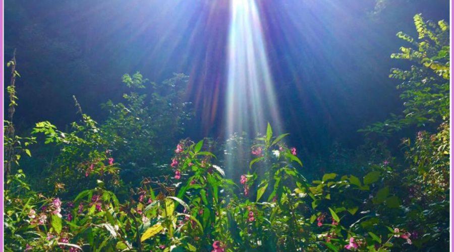 Die Magie des Glaubens