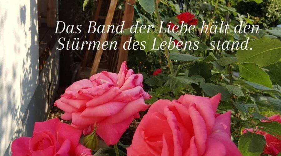 Das Band der Liebe